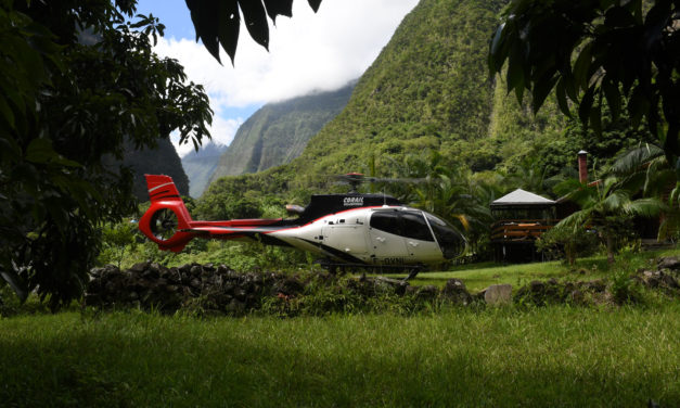 Flying in Paradise