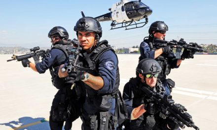 California's Angels, air support in L.A.